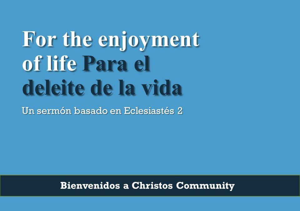 For the enjoyment of life – Ecclesiastes 2