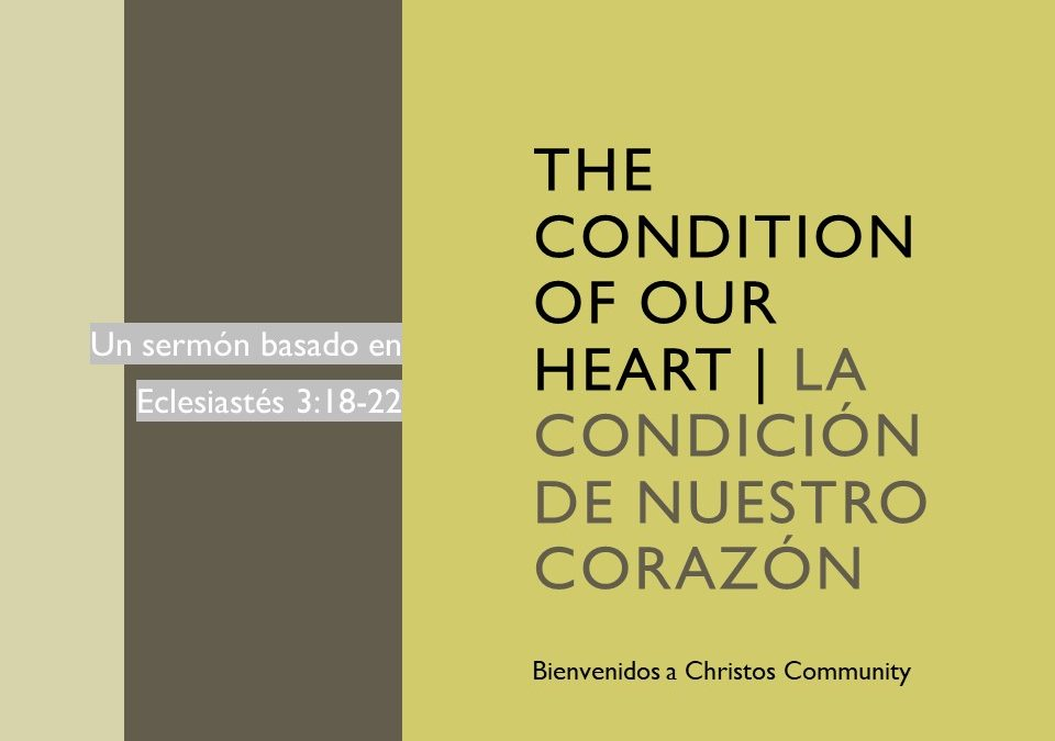 The Condition of our Heart – Ecclesiastes 3:18-22